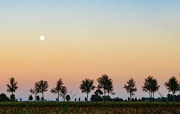 Uitzicht camping Lentemaheerd in Uithuizermeeden (Gr.) van Greet ten Have-Bloem