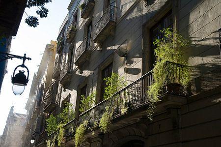 Barcelonastreets