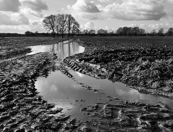 Modder in de polder