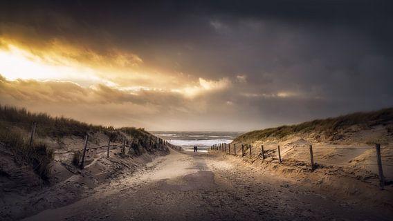 De weg naar het strand