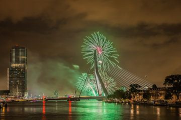 Rotterdam Erasmusbrug WHD 2015 #2 van John Ouwens