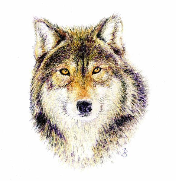 Wolf van Bianca Tekent