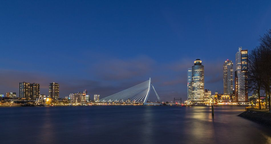 Skyline Rotterdam in the Blue Hour - Part two