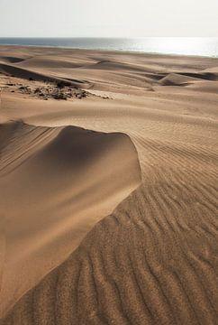 Boa Vista zandduinen van Jaap van Lenthe
