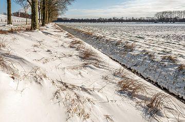 Nederlands winterlandschap met een sloot van Ruud Morijn