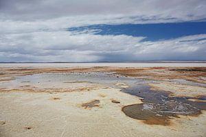 Kleurrijke lagune in Salar de Uyuni in Bolivia