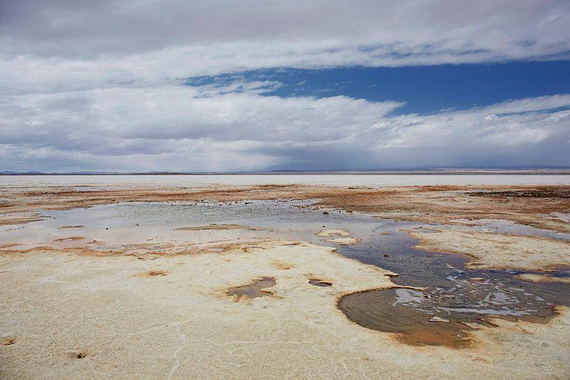 Kleurrijke lagune in Salar de Uyuni in Bolivia van Tjeerd Kruse