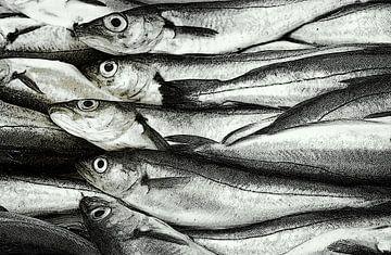 Vis.Op de vismarkt sur marleen brauers
