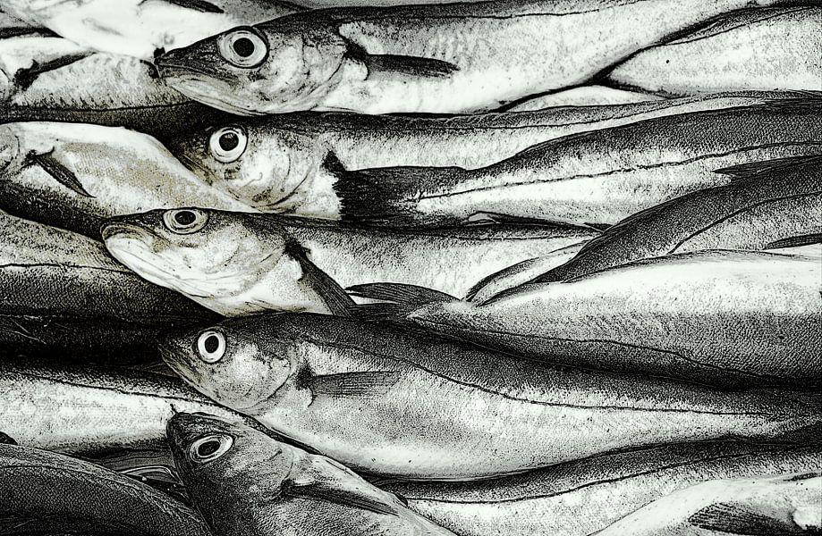 Vis.Op de vismarkt