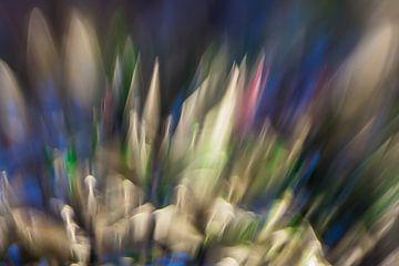 Kleur Explosie #1 von Robert Wiggers