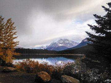 Campingplatz Wasservogelseen, Alberta, Kanada von Daan Duvillier