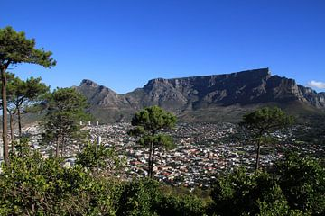 Tafelberg Kaapstad vanaf Signal Hill von Jan Roodzand