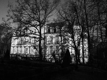 Schloss Poeke von Rex Quintyn