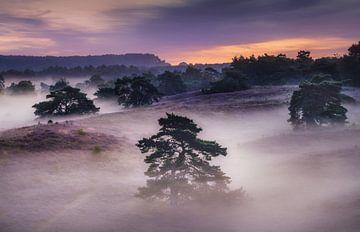 Het dekentje van mist