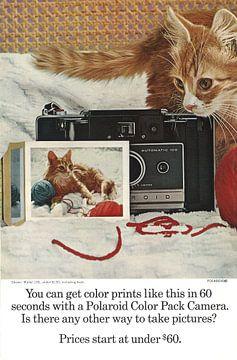 Polaroid-Farbpack-Kamera! von Jaap Ros