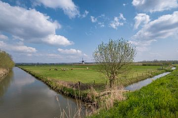 Hollands tafereel von Moetwil en van Dijk - Fotografie