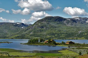 Die norwegischen Fjorde von Naomi Elshoff