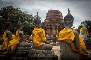 Boeddha standbeelden van