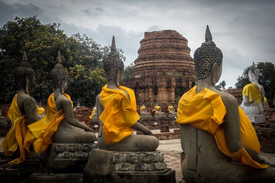 Boeddha standbeelden van Tessa Louwerens