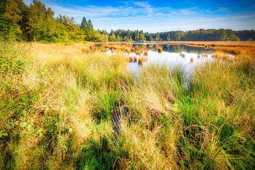 holländische Landschaft von eric van der eijk