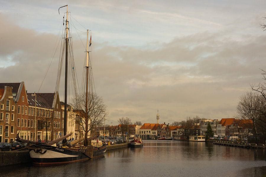 Spaarne Haarlem van Wendy Drent