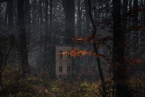 Restaurant Wolfslaar in het bos, Breda, Baronie, Noord-Brabant, Nederland, Holland.