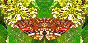Vlinder/butterfly van Susan Stiletti