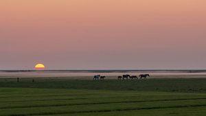 Das Noorderleeg von By Foto Joukje
