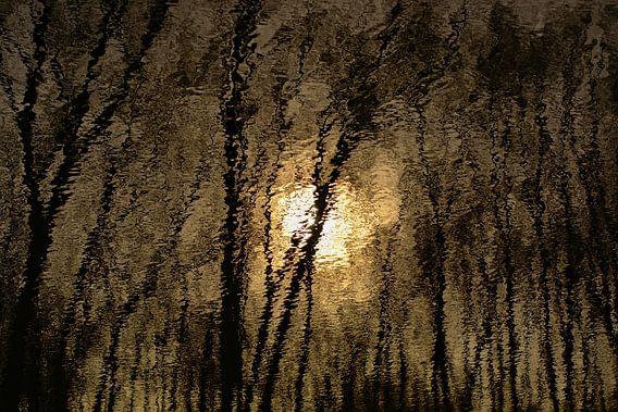 Weerspiegeling van zon en bomen in golvend water