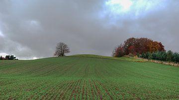 Volop herfst in Sauerland - Duitsland van Jeroen(JAC) de Jong