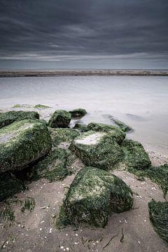 De ruige Noordzee kust van Dirk-Jan Steehouwer