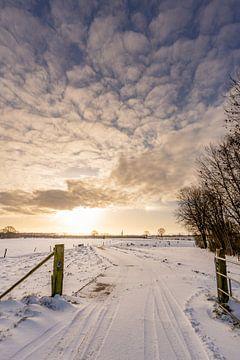 Prachtig winterlandschap bij zonsopkomst van Dafne Vos