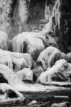 Frozen II van