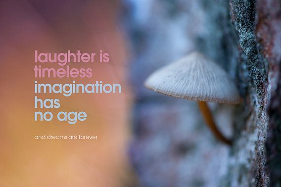 Quote: Laughter is timeless imagination has nog age...