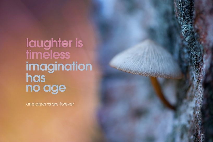 Quote: Laughter is timeless imagination has nog age... van Andrea Gulickx