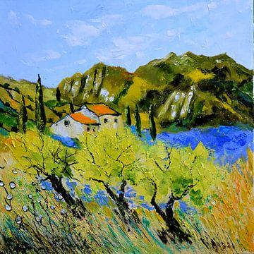 Provence 889110 van pol ledent