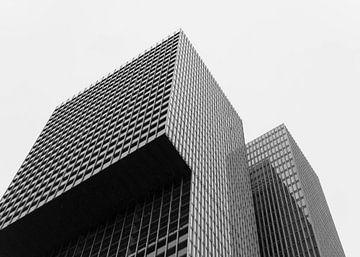 De Rotterdam van Muriël Mulder