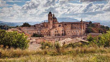 Urbino van Rob Boon