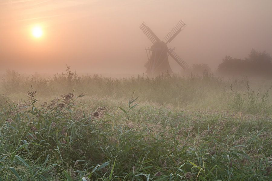 Noordermolen in de mist