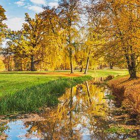 Herbst im Park von Gunter Kirsch