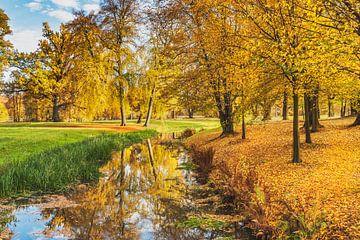 Herfst in het park van Gunter Kirsch