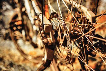 fiets van Dagmar Marina