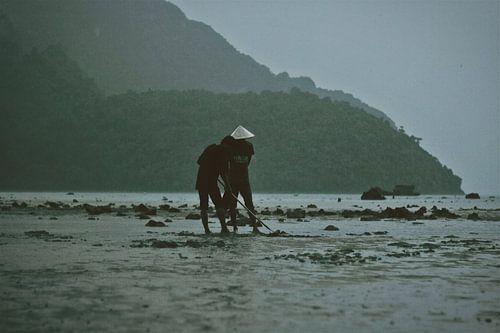 Boeren op het strand Koh Phi Phi van