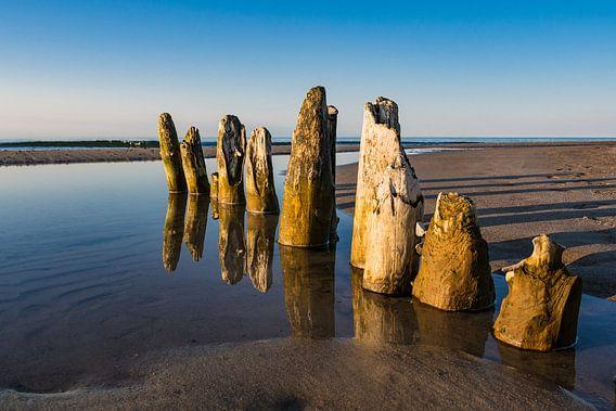 Buhnen an der Küste der Ostsee