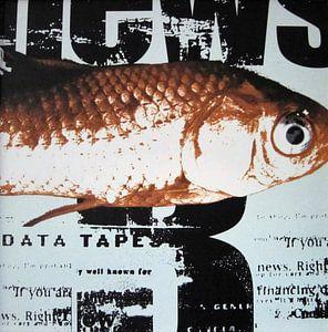Fisch auf Zeitung, Goldfisch