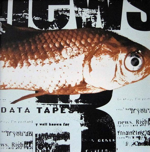 Vis op krantenpapier, goudvis van Muurbabbels Typographic Design