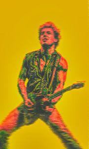 Bruce Springsteen van