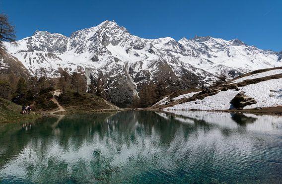 Lac Bleu. Zwitserland