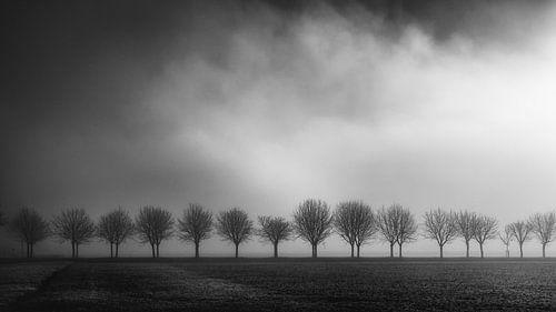 Licht von Christophe Staelens