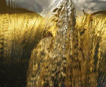 Goud van Wendy Drent